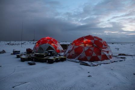 vp8sti-camp
